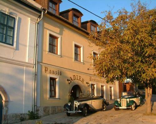 Adler Panzio, Pension in Budaörs