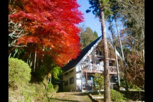 MUSIC FOREST 八音盒主題森林別墅和露營地