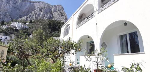 Villa Striano Capri - Guest House - Rooms Garden & Art in Capri