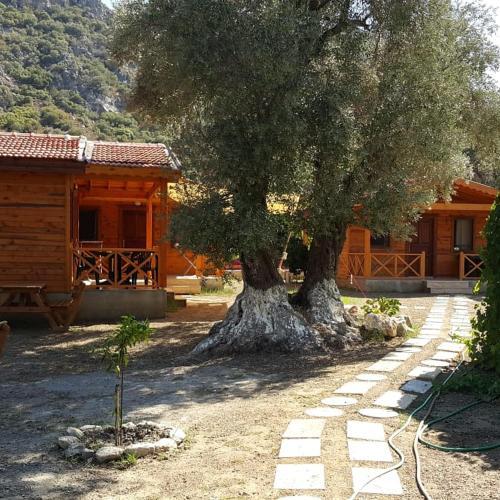 Datça Dream Garden Evleri