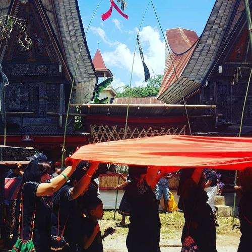 Toraja traditional homestay, Tana Toraja