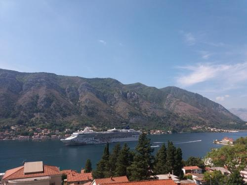 Wondering where to stay in Kotor? Apartments Peranovic is one of the best budget options!