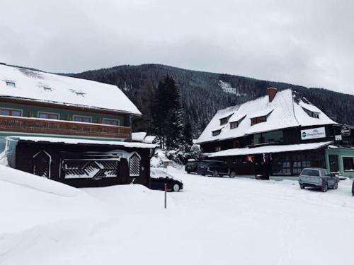 Фото отеля Gasthof Draxlerhaus