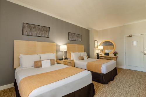 Hotel Pennsylvania *Недавно отремонтированный номер Penn Plaza Collection с 2 двуспальными кроватями