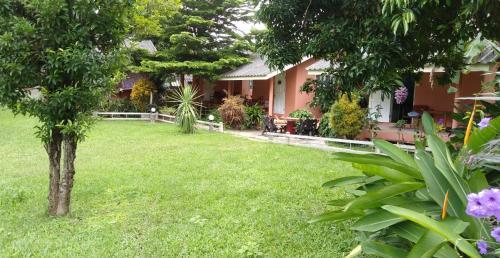 Baankanoonpai(บ้านขนุนปาย) Baankanoonpai(บ้านขนุนปาย)