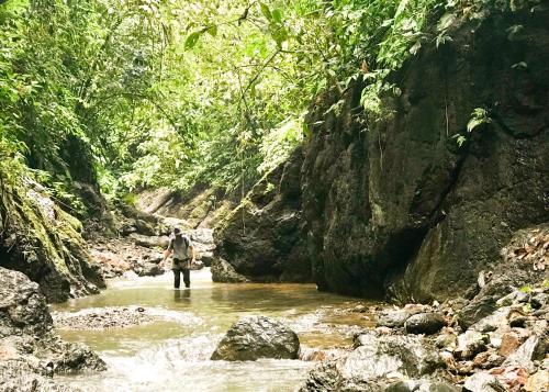 Posada Rural El Manantial De Corcovado
