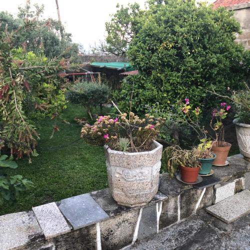 JRGMLPP, Calheta