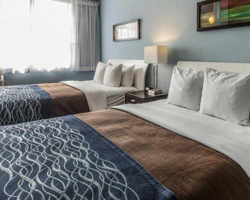 Comfort Inn & Suites Levittown Foto principal