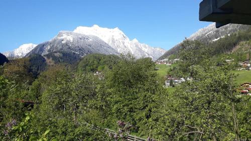 Alpen Apart Michael Mayrhofen