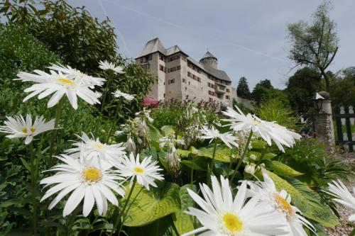 Kasteel-overnachting met je hond in Boutique Hotel Schloss Matzen - Reith im Alpbachtal