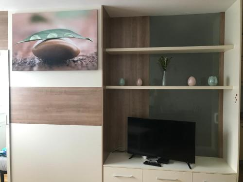 Apartment na Povšetova