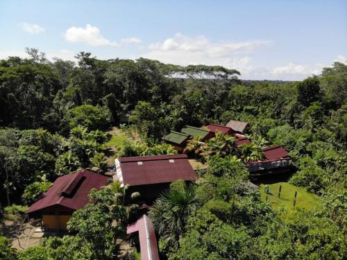 . Ecoadventure Amazon Lodge
