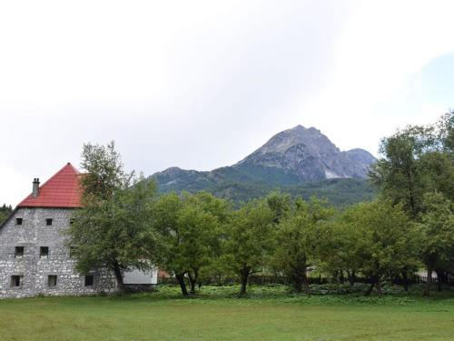 Guesthouse Jezerca, Tropojës