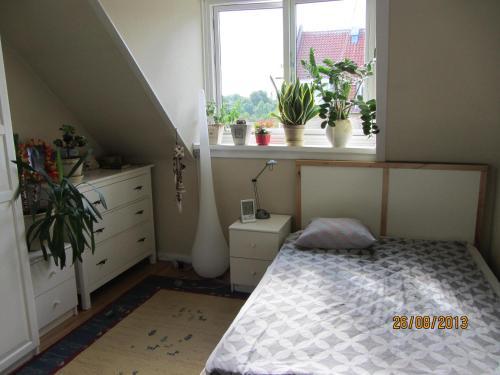 Cosy room in sydhavn, Pension in Kopenhagen bei Kopenhagen