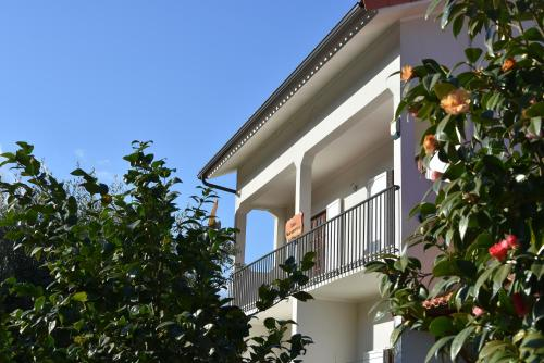 Casa Mouramortina, Pension in Vila Nova de Poiares bei Vila Nova de Poiares