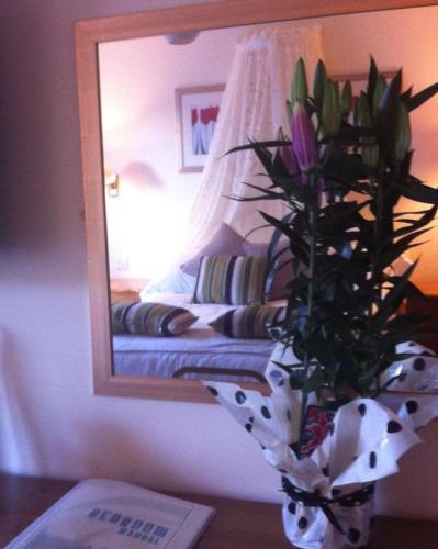 Photo - The Tally Ho Hotel - B&B