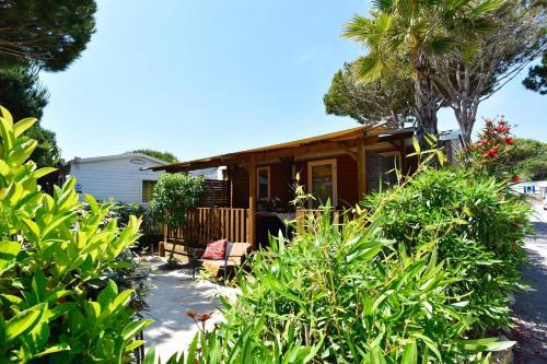 Sas Robrecht - Camping - Saint-Tropez