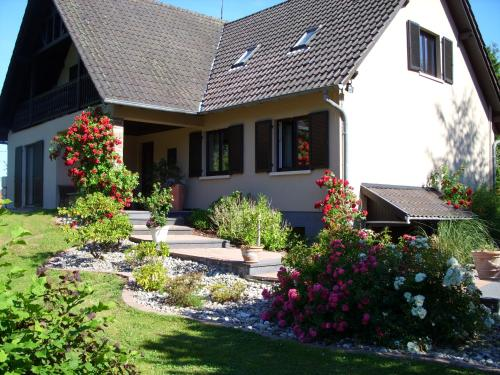Mittenbach - Apartment - Oberhaslach