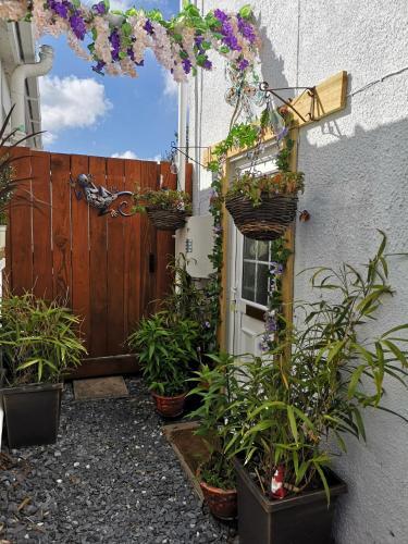 Mystical Hideaway, Newquay, Cornwall