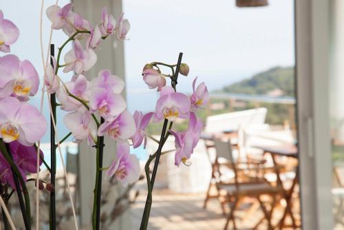 Habitación Doble Deluxe con terraza Es Cel de Begur Hotel 14