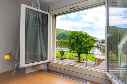 . BS Neckar Apartment Heidelberg
