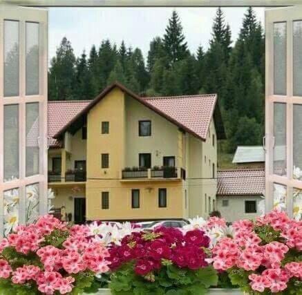 . Flori de Bucovina