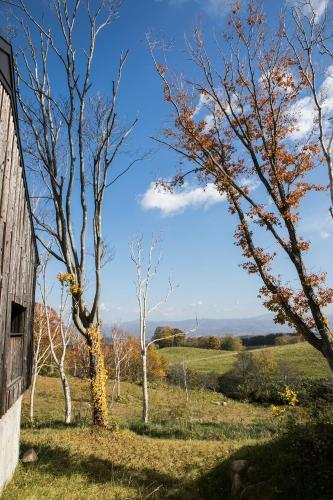 76-4 Hanazono Kutchan-cho, Abuta-gun, Hokkaido,044-0084, Japan.