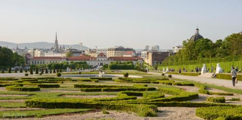 Top Of Belvedere by welcome2vienna - image 5