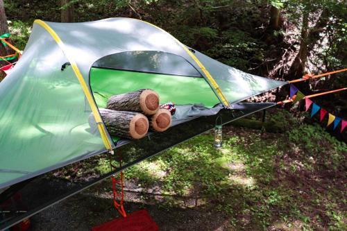 Sky Tent In Doshi