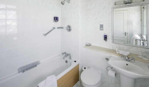 Somerville Hotel - Photo 8 of 81