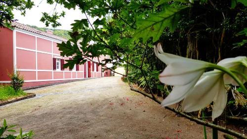 Casa Dona Beatriz - Photo 8 of 38