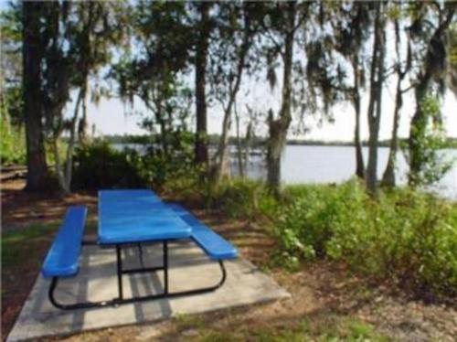 Lovely Vacation Rental Home Close to Disney 4 Bdrm Private Pool Free Internet - image 5
