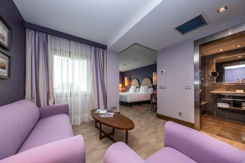 Suite Junior Artiem Asturias 8