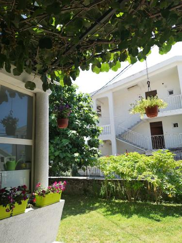 Suster Guest House,