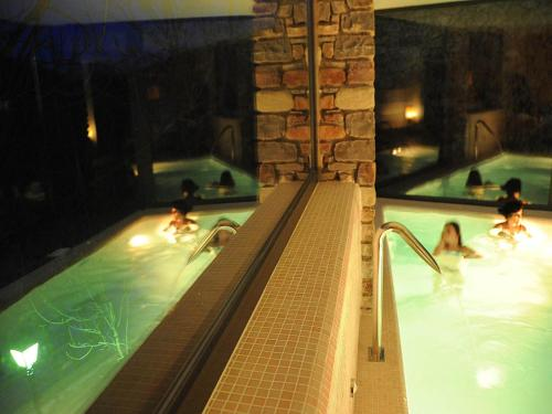 Deluxe Double Room with Spa Access Bonansa Country Hotel 19