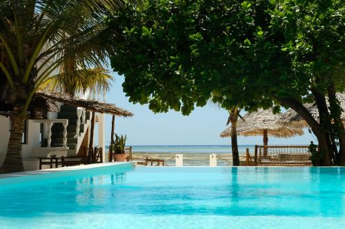 Makuti Beach Bungalows In Bwejuu Tanzania 80 Reviews