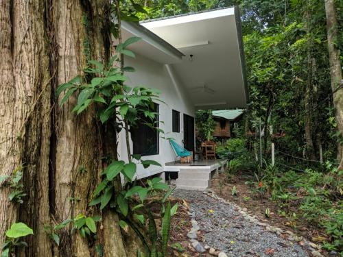 . Peaceful, Private and Modern Jungle Studio