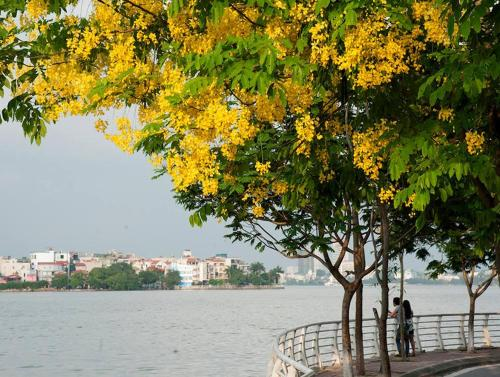 Ha Noi West Lake House, Tây Hồ
