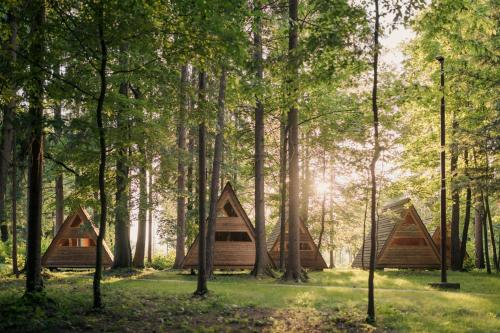 . Forest Camping Mozirje