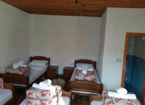 Theth Lodge, Shkodrës
