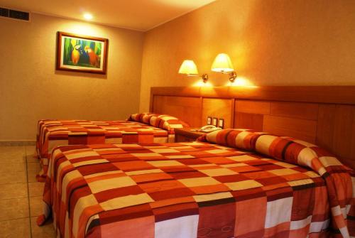Hotel Tortuga Express szoba-fotók