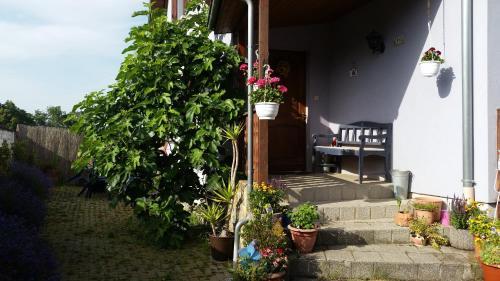 Ferien im Elsass - Apartment - Artolsheim
