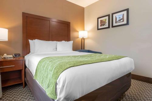 Comfort Inn & Suites near JFK Air Train - image 3