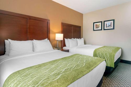 Comfort Inn & Suites near JFK Air Train - image 7