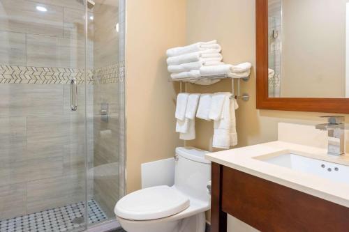 Comfort Inn & Suites near JFK Air Train - image 8