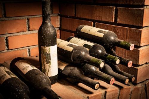 Weingut Sternat vlg. Schmalzpeter, Leibnitz