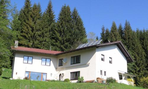 Ferienhaus Hollinger - Apartment - Afritz