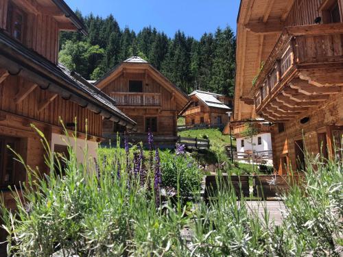 Donnersbachwald Hotels