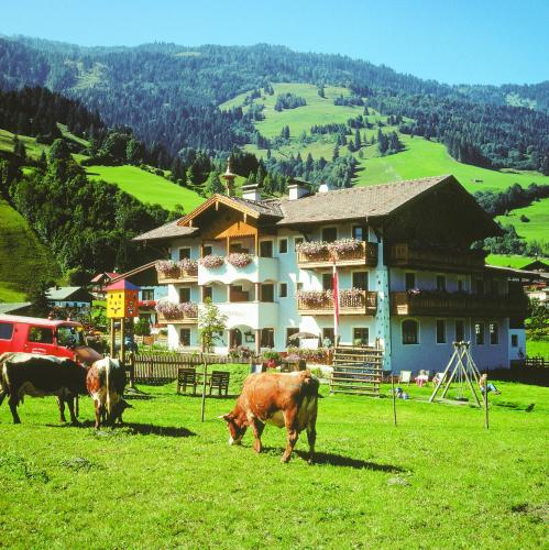 die UnterbergerIn - Accommodation - Dorfgastein