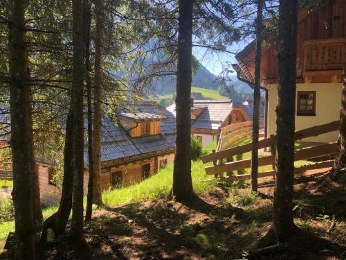 Bergdorf Riesner - Hotel - Donnersbachwald